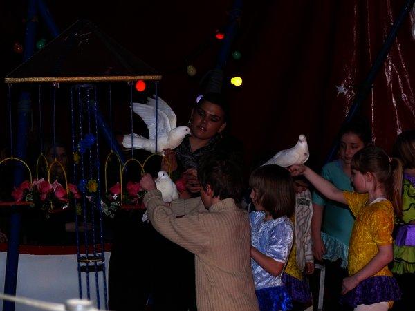 Zirkus in der Bürgerstraße
