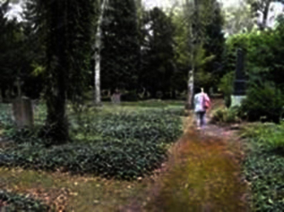 Auf dem Weg zum Ausländerfriedhof
